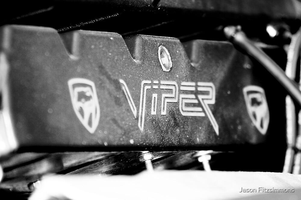 Viper by Jason Fitzsimmons