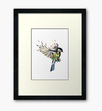 Flying Songbird Cyanistes Caeruleus / Blue Tit Bird - white Framed Print