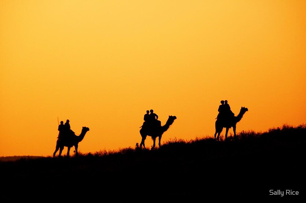 On Camel Safari by Sally Rice