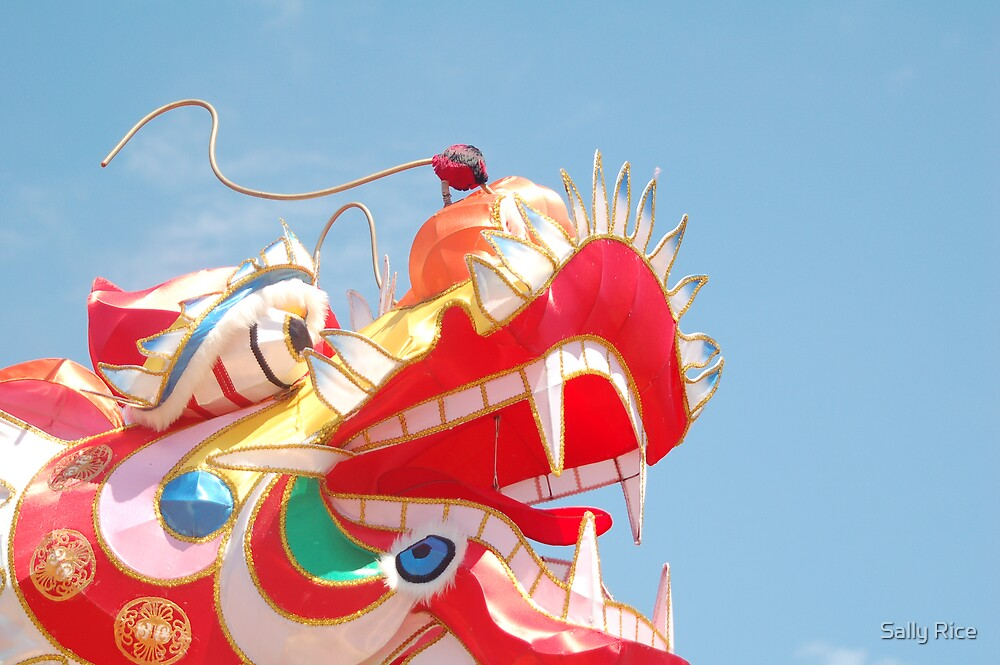 Chinese New Year by Sally Rice