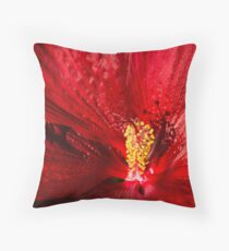 Passionate Ruby Silk Throw Pillow