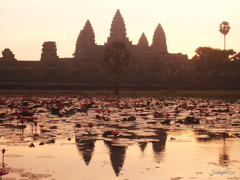 Angkor Wat by Sally Rice