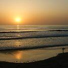 California Surfing Sunset - Pacific Beach, San Diego, California by Georgia Mizuleva
