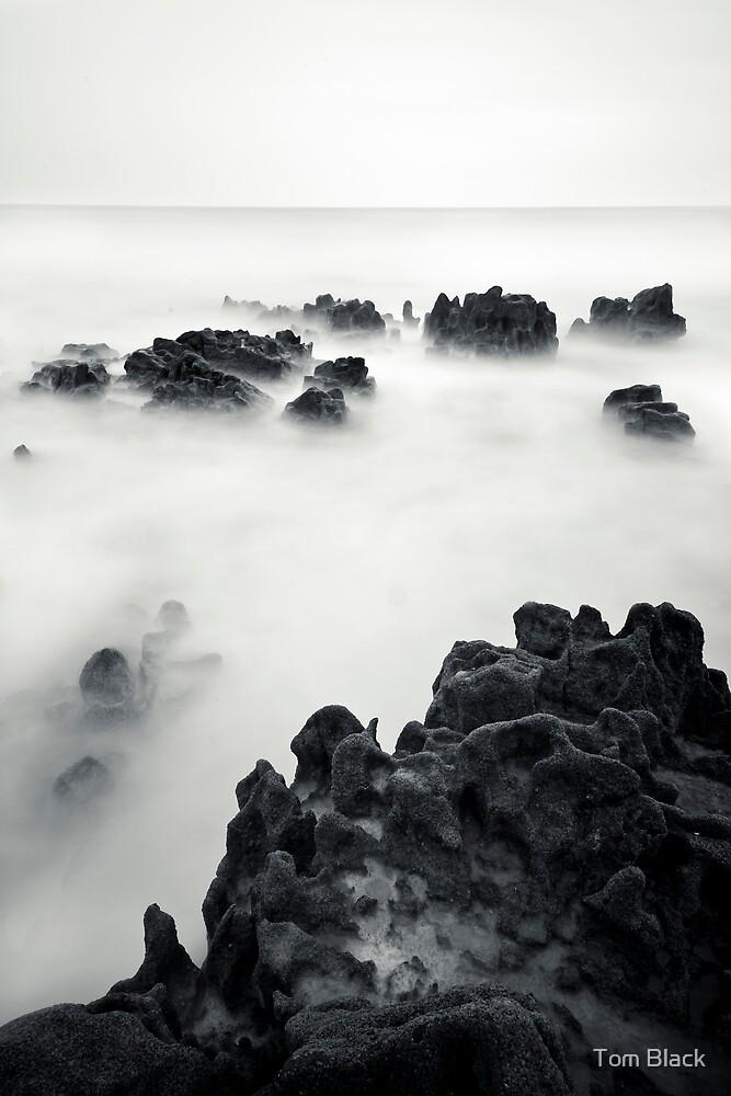 Reef II by Tom Black