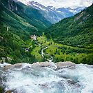 Waterfall in the Alps by Silvia Ganora