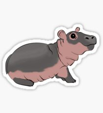Fiona the Baby Hippo Sticker