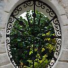 A Lush Garden Framed in a Fence Window by Georgia Mizuleva