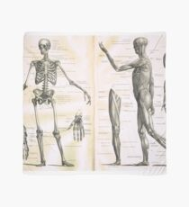 19th century anatomy illustration parts of  a human skeleton Scarf