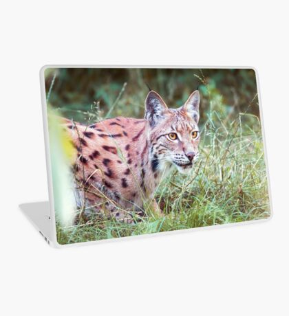 Lynx in the grass Laptop Skin
