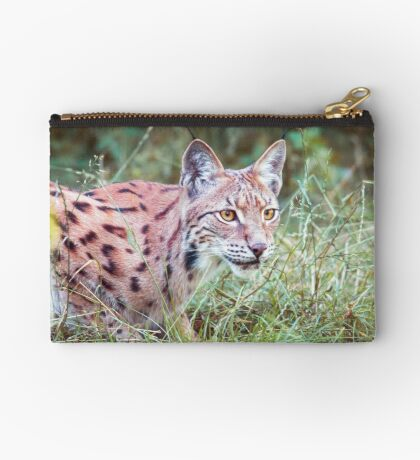 Lynx in the grass Studio Pouch