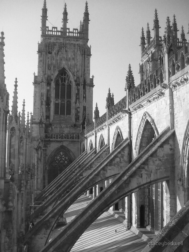 york minster by staceybedwell