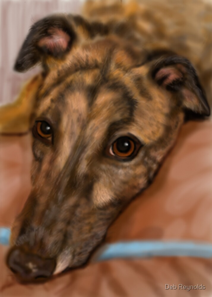 Greyhound by Deb Reynolds