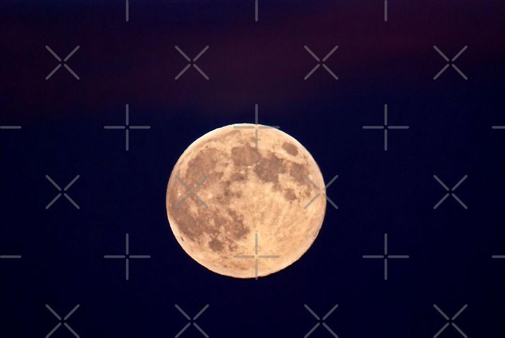 moon by nitelite