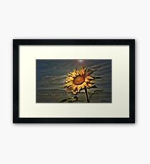 Your Daily Sunshine Framed Print