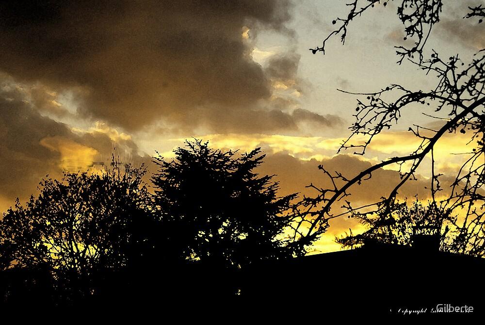 Yellow Sunset by Gilberte