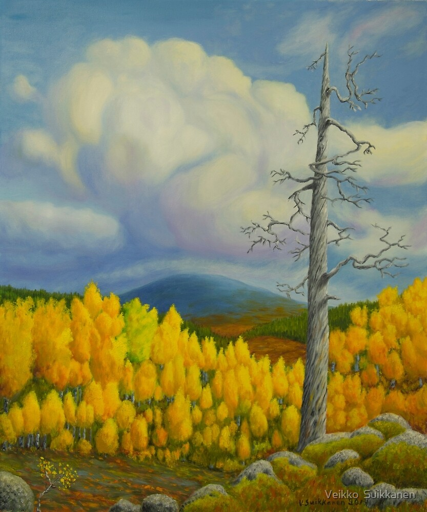 Autumn in Lapland by Veikko  Suikkanen