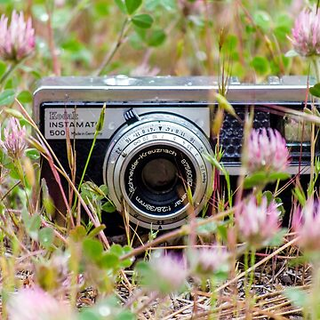 Flower Field Camera by rachelallison