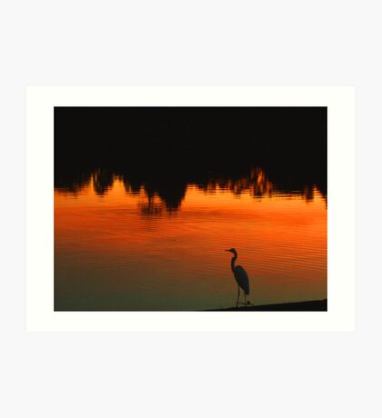 Wading in Fire Art Print