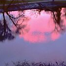 Pink Clouds in the Rideau River, Ottawa, ON  by Shulie1