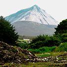 Another view of Mount Errigal, Donegal, Ireland by Shulie1