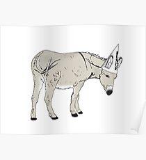 Dumb Donkey Poster