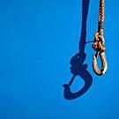 Hooked on Blue by Steve Kaiser