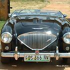 Things on Wheels - 1953 Austin Healey BN1 100-4 2-seater  by Maree Clarkson