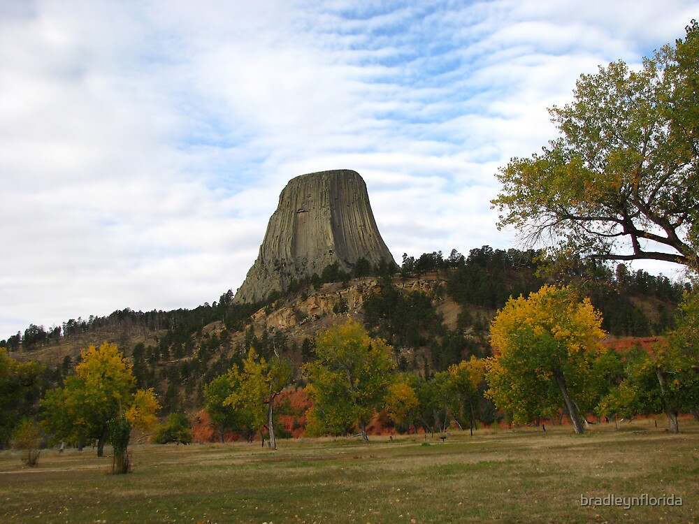 Devil's Tower Monument in Wyoming by bradleynflorida