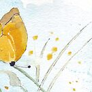 Butterfly simplicity by Maree Clarkson