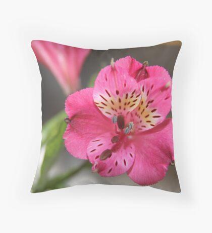 Subtle Pink Throw Pillow