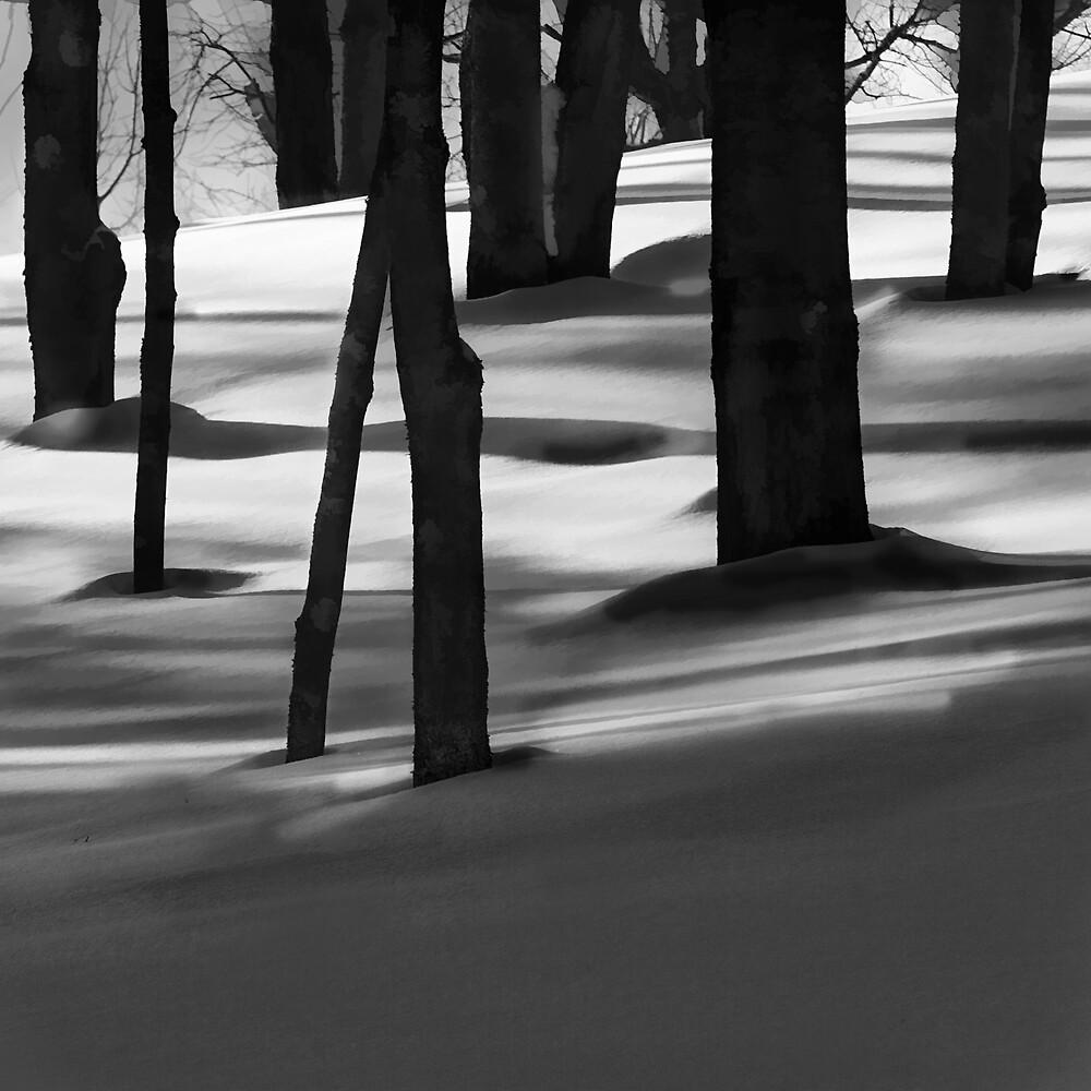 Snow Shadows by Chet Scerra
