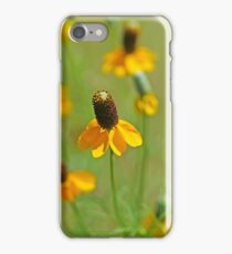 Mexican Hat Dance iPhone Case/Skin
