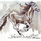 Eine Handvoll Südwind ... Wilde Pferde in Südafrika von Maree Clarkson