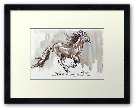 A handful of Southerly wind ... Wild horses in South Africa by Maree Clarkson