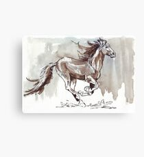 A handful of Southerly wind ... Wild horses in South Africa Canvas Print
