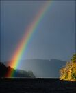 Loch Ard Rainbow by David Mould