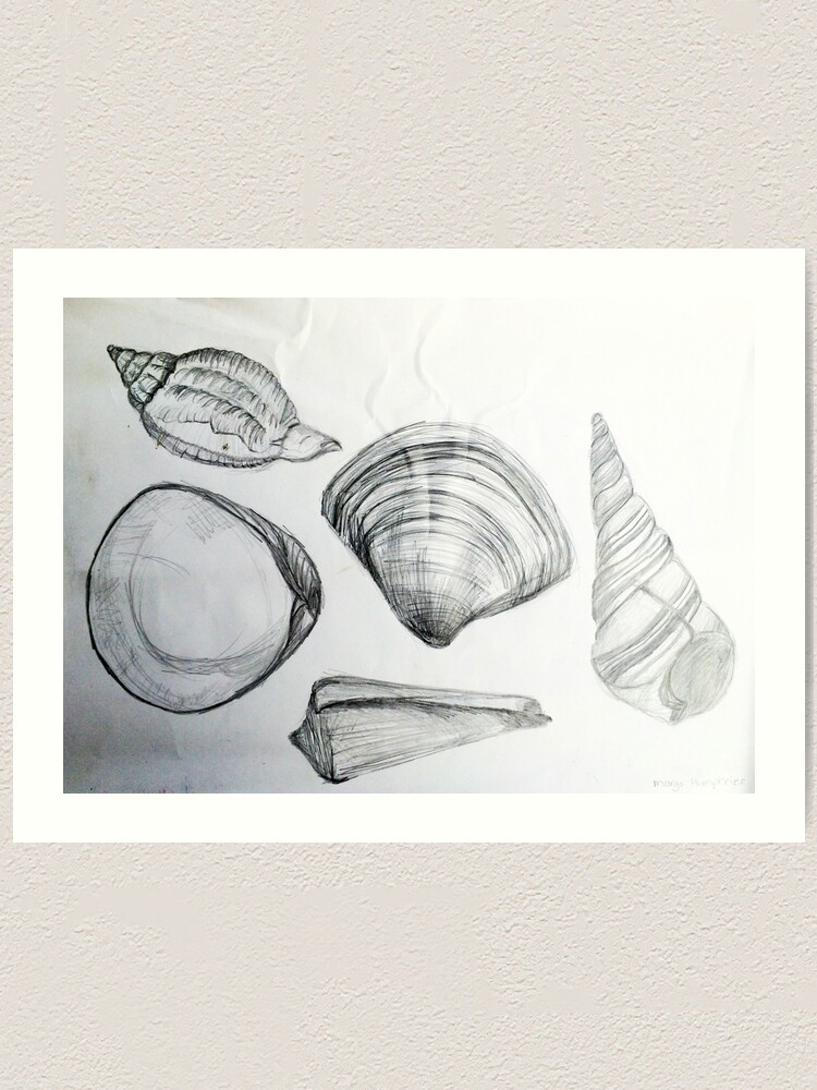 Alternate view of Sea Shells 4 by Margo Humphries Art Print