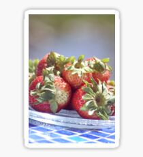 Succulent Strawberries Sticker