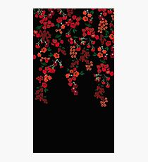 Falling Flowers Photographic Print