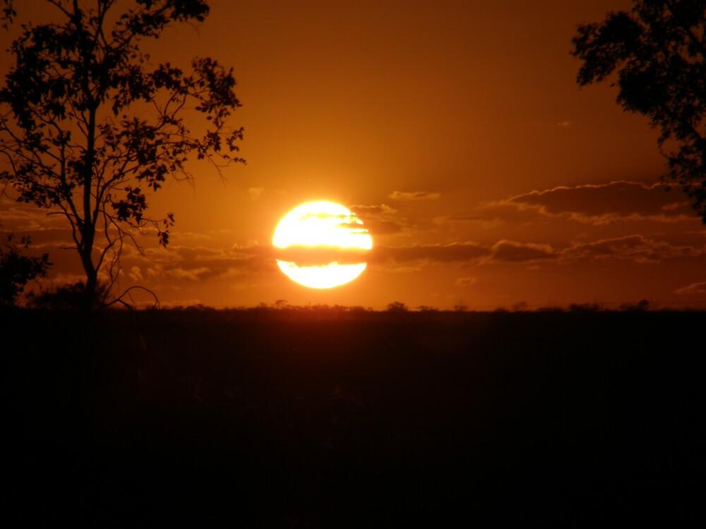 Beautiful Sunset by JudyMac