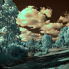 The park in IR by BigAndRed