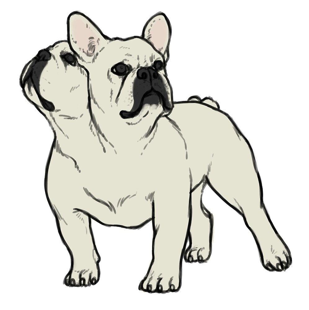 French Bulldog by lacewinchester