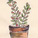 Sedum rubrotinctum - Jelly Beans von Maree Clarkson