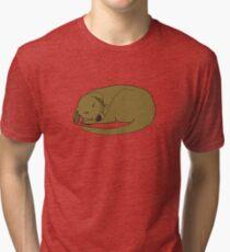 Sleepy Dog Tri-blend T-Shirt
