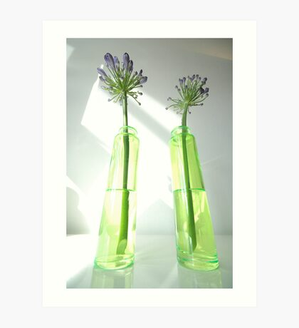 agapanthus perspectives Art Print