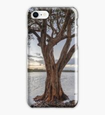 Lake Ainsworth HDR iPhone Case/Skin