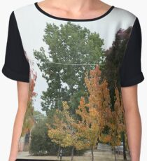 Autumn is coming Chiffon Top