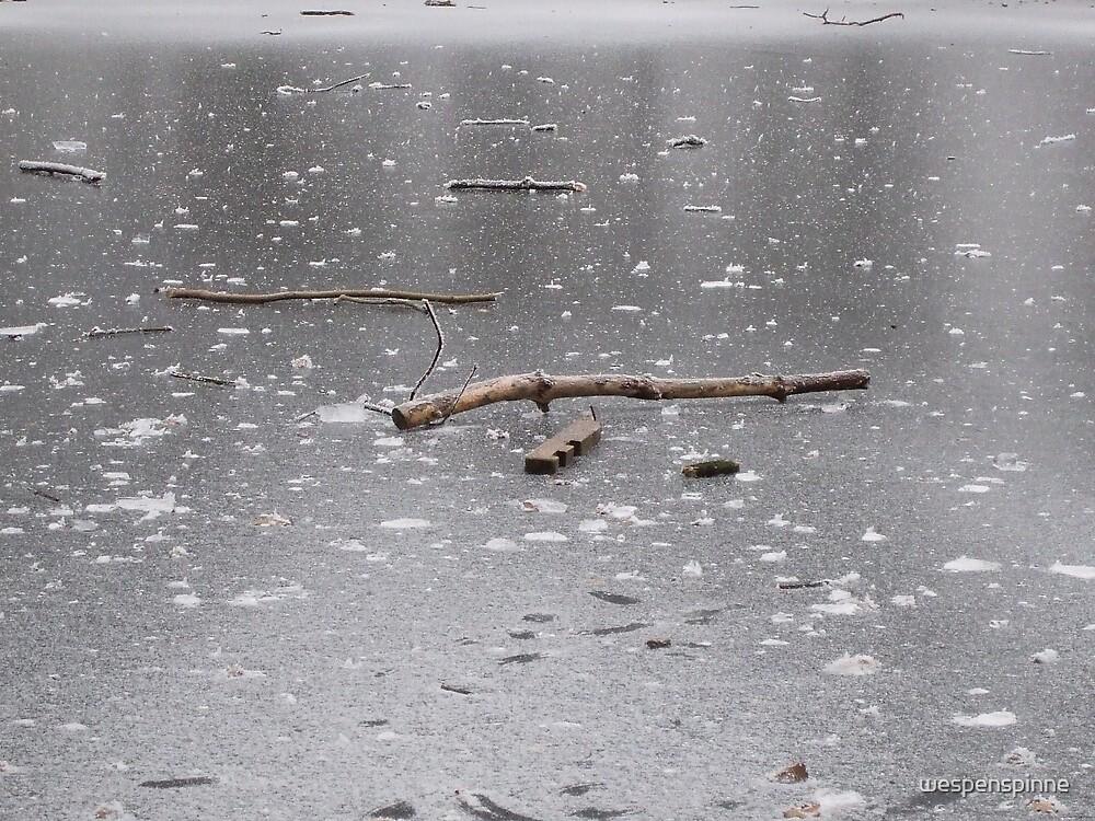 the frozen lake 2 by wespenspinne