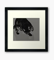 Sneak Framed Print