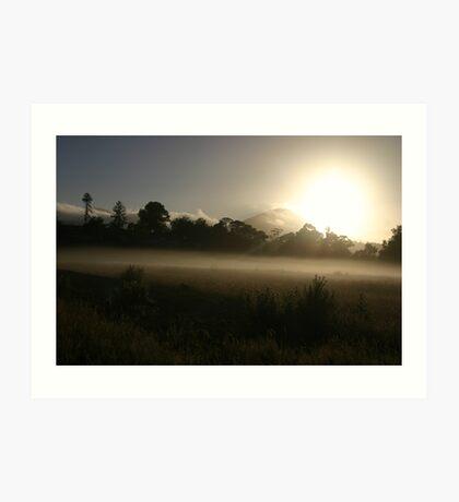Misty morning in Healesville Art Print